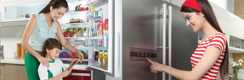 Hanel đơn vị sửa tủ lạnh chuyên nghiệp