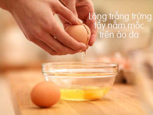 Dùng lòng trắng trứng tẩy nấm mốc
