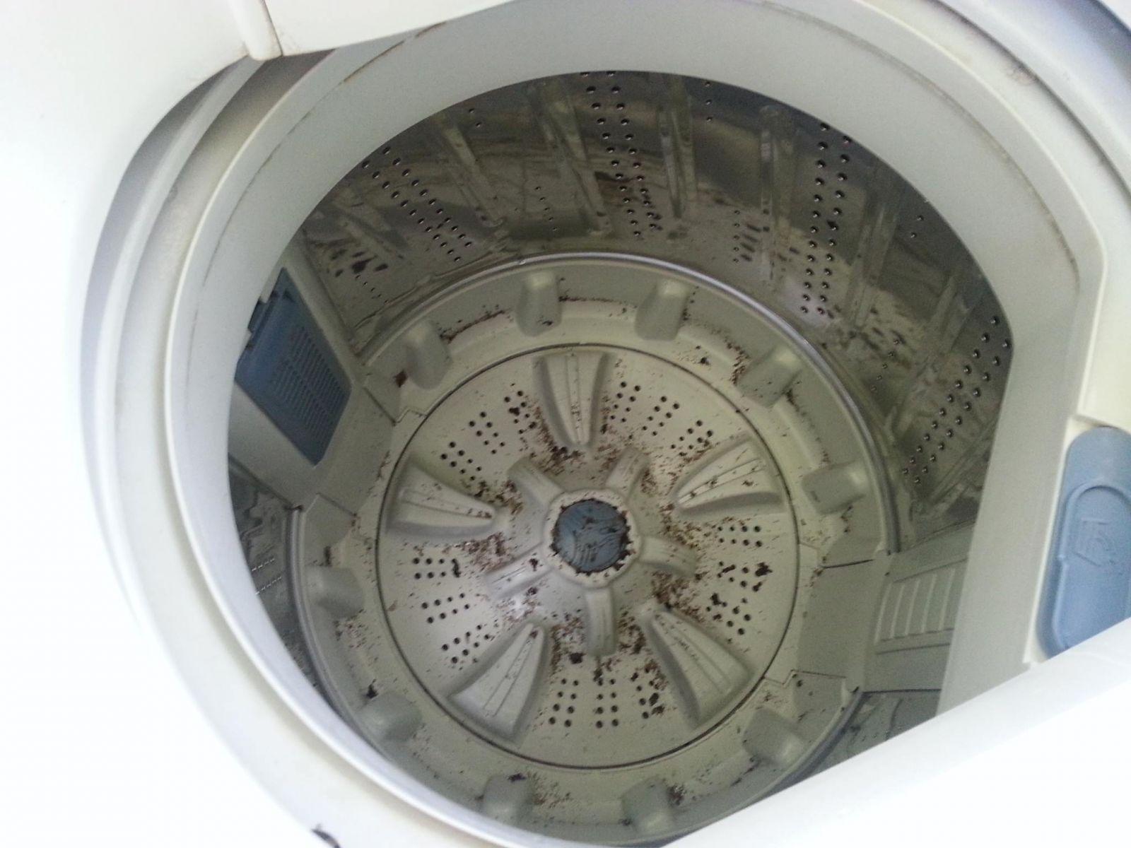 Máy giặt làm sạch quần áo hay là một ổ vi khuẩn?